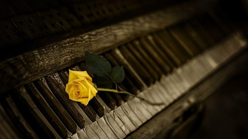 piano-1239729__480